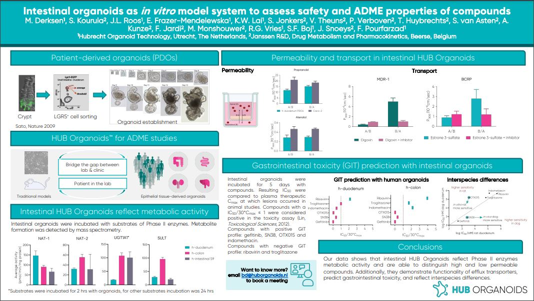 intestinal organoids as in vitro model system to assess safety and ADME properties of compounds_snip